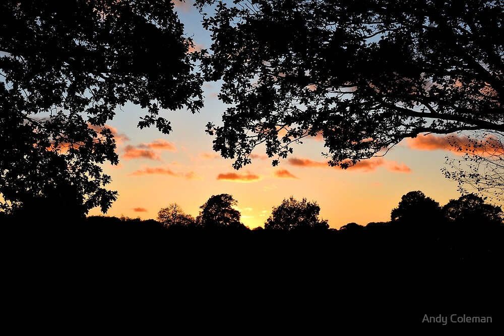 Late Evening Sunset Over West kent by Andy Coleman