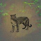 Cougar by David Dehner