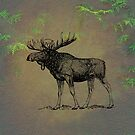 Moose by David Dehner