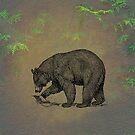 Black Bear by David Dehner