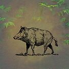 Boar by David Dehner
