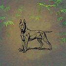 Bull Terrier by David Dehner