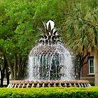 Waterfront Park - Charleston by ctheworld