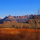Zion National Park - Entering from the South by Paul Gilbert