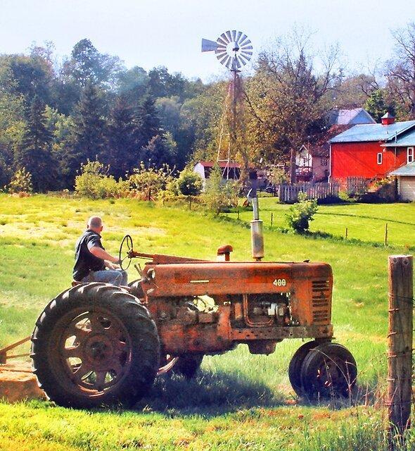 Bringing in the Hay by Nadya Johnson