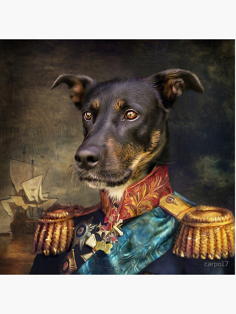 Dog Portrait - Arlo by carpo17