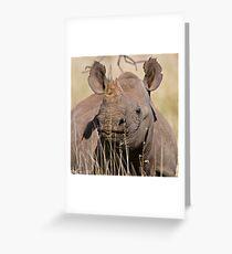 Black Rhino at Lewa Greeting Card