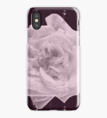 White rose on violet background iPhone Case