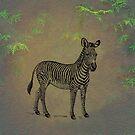 Zebra by David Dehner