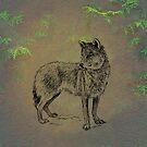 Wolf 2 by David Dehner