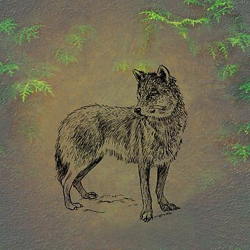 Wolf 2 by netdweller