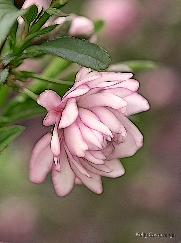 Pink Flowering Almond by Kelly Cavanaugh