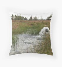 Pumped Farm Irrigation Throw Pillow