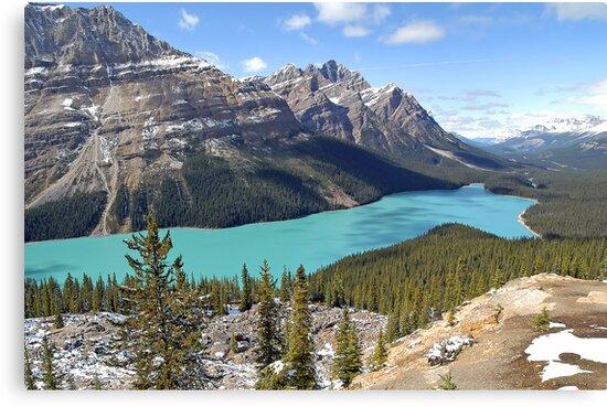 Peyto Lake - Banff National Park - Alberta - Canada by paolo1955