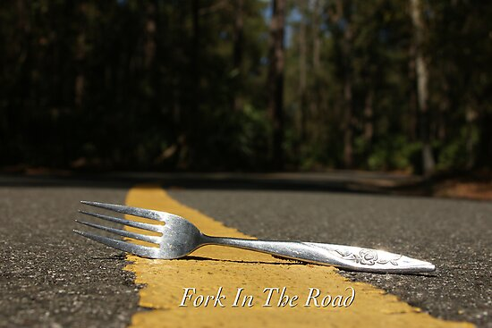 Fork In The Road by JpPhotos