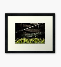 Life At The Cutting Edge Framed Print