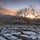 Sunrise at Twistleton Scar, Yorkshire Dales in winter by Wendy  McDonnell