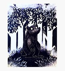 Bear in the dark illustration  Photographic Print