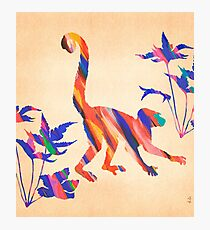 Exotic Monkey Paintbrush Rainbow Collage Photographic Print