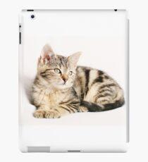 Cozy cat iPad Case/Skin