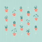 Potted Plants by abbilaura