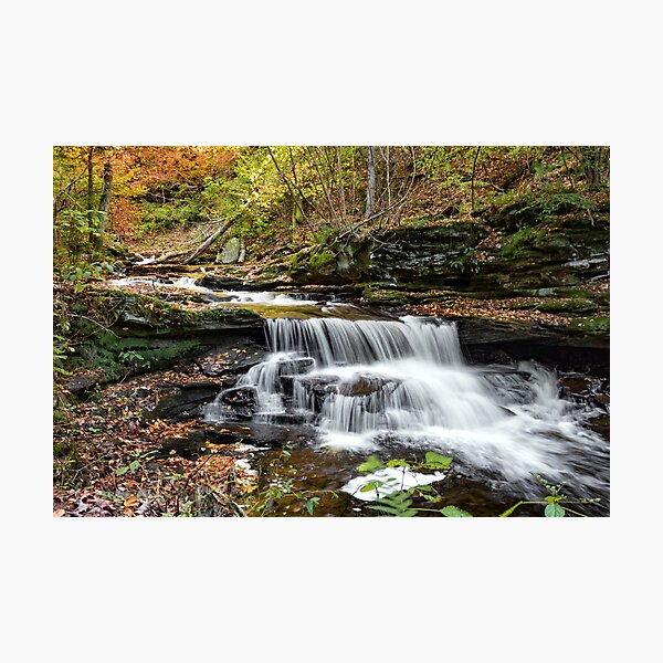 Unnamed Falls at Ricketts Glen SP Photographic Print