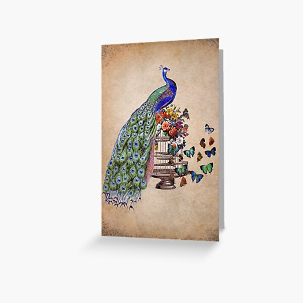 Vintage Peacock Beauty Greeting Card