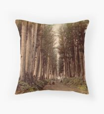 Imaichi Nikko Road, Japan Throw Pillow