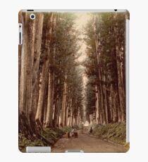 Imaichi Nikko Road, Japan iPad Case/Skin