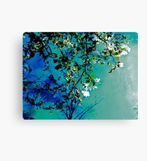 Spring Synthesis IIV Canvas Print