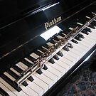 Flute on Piano Keyboard von BlueMoonRose