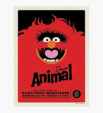 The Muppets - Animal Photographic Print