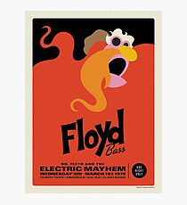 The Muppets - Floyd Photographic Print
