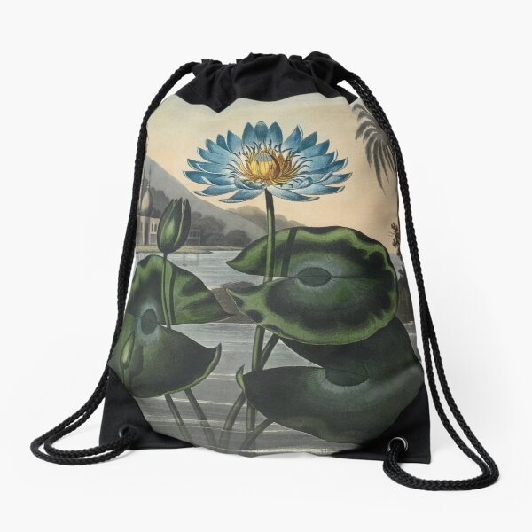 Botanical illustration: Blue Egyptian water lily by Robert Thornton – State Library Victoria Drawstring Bag