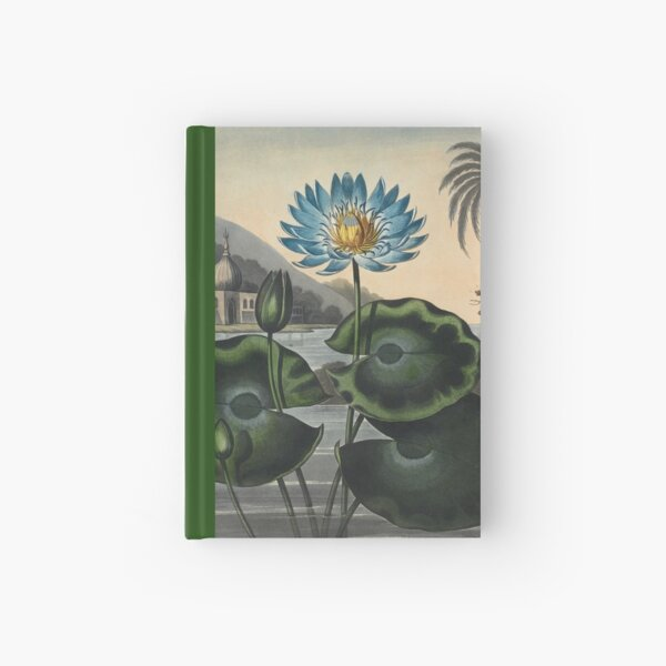 Botanical illustration: Blue Egyptian water lily by Robert Thornton – State Library Victoria Hardcover Journal
