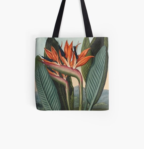 Botanical illustration: Bird of Paradise (Strelitzia) – State Library Victoria All Over Print Tote Bag