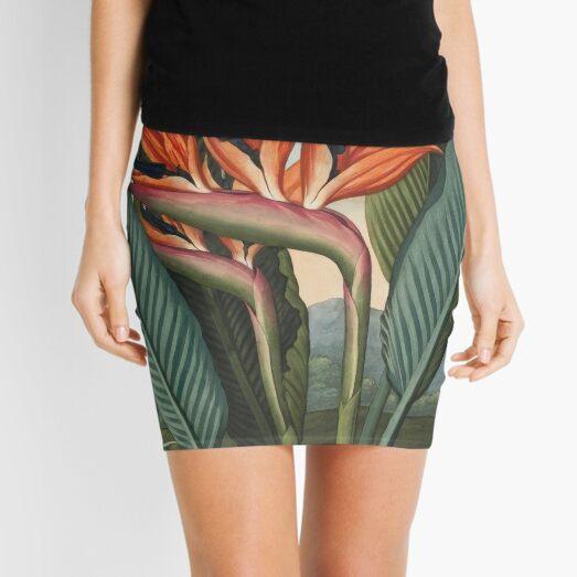 Botanical illustration: Bird of Paradise (Strelitzia) – State Library Victoria Mini Skirt