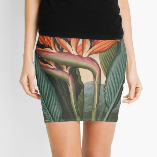 Botanical illustration: Bird of Paradise (Strelitzia) – State Library Victoria Mini Skirt