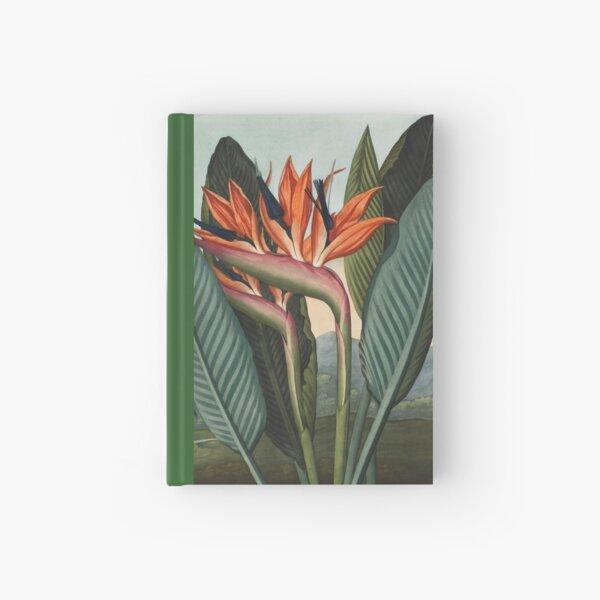 Botanical illustration: Bird of Paradise (Strelitzia) – State Library Victoria Hardcover Journal