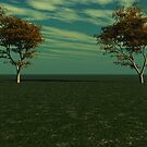 Maple Trees by dmark3