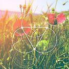 Sacred geometry design for geeks by Veronika Bychkova