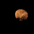 Moon on Easter Eve by James Wheeler
