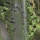 Island Waterfall by Vanessa Combes