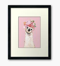 Lámina enmarcada Llama con flores Corona en rosa