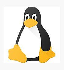 Linux penguin Photographic Print