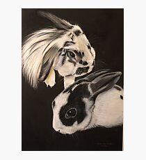 Rabbits!! Photographic Print