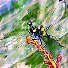Darn Dragonfly by michdevilish