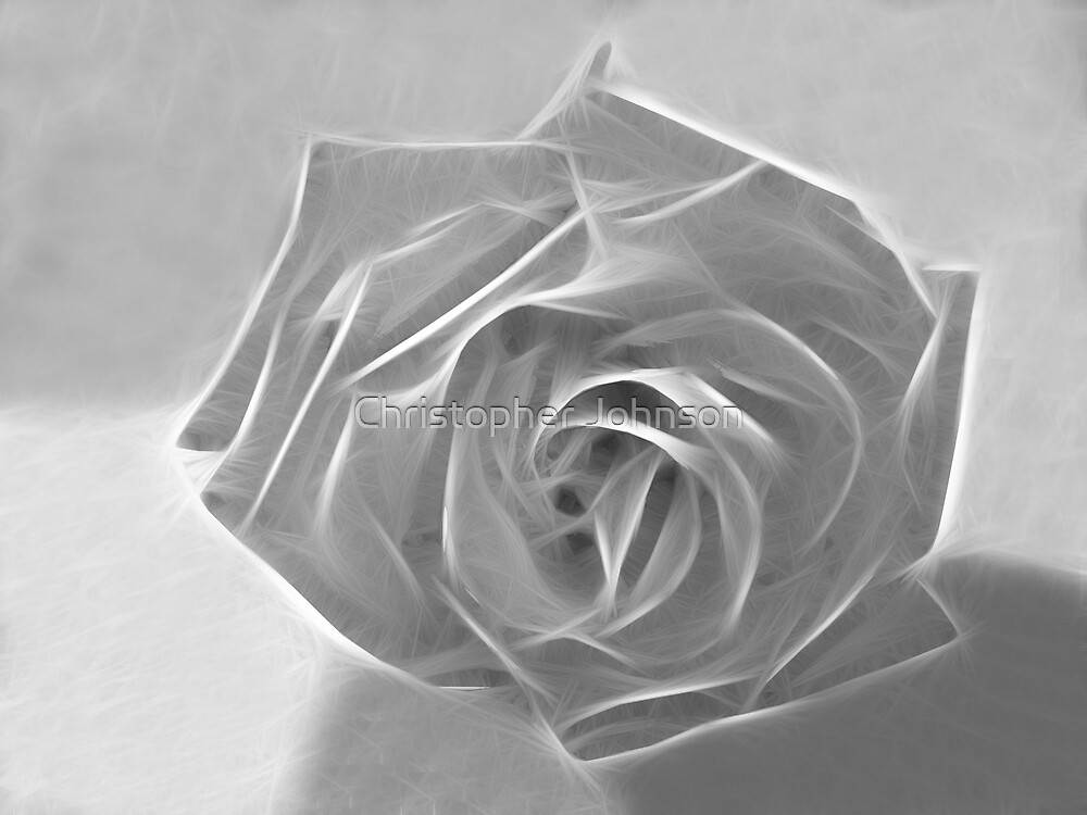 Essence of a Rose 3 by Christopher Johnson