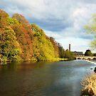 THE RIVER BOYNE Co MEATH by Finbarr Reilly