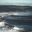 Whitby Wave! by dougie1